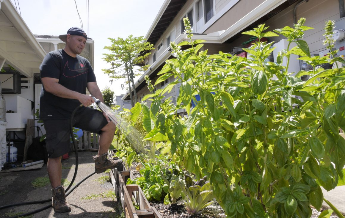 Honolulu Civil Beat: An Alternative Economy For Trying Times